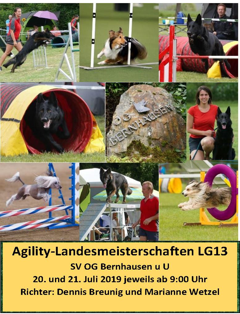 SVOGBernhausen_Agility LM 2019_Seite_1